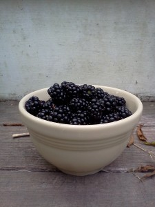 blackberry still life